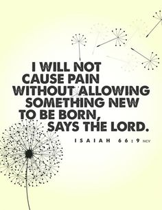 I will not cause pain without allowing something new to be born, says the Lord.