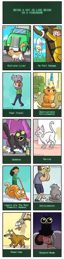 Reminds me of my cat!