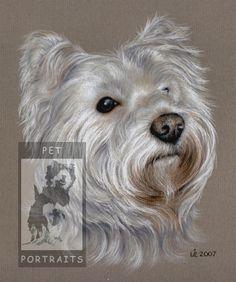 Westie dog pet portrait watercolour pencil crayon http://uniquepetportraits.blog.com/