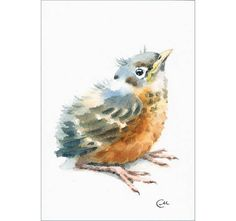 Baby Bird  Original Watercolor Painting 5 x 7 inches Nursery