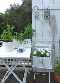 white flowers and herbs on porch