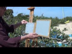 Acrylic painting demonstrations painted on location throughout the United States.