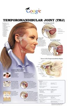 TMJ - Temperomandibular Joint Are you suffering from chronic headaches, jaw pain or tooth pain? Call to schedule an exam at Boss Dental Dental Health, Oral Health, Dental Care, Health Tips, Dental Humor, Dental Hygienist, Jaw Pain, Ehlers Danlos Syndrome, Chiropractic Care