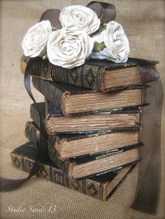 Love the black books, would be great in my living room.  Swede Dreams: French Cottage Series