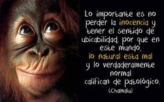 #serfeliz #inspiracion #frases