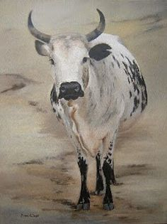 Contemporary South African Artist Erna Wade paints Nguni, wildlife and other African themes in Oils, Acrylic, Mixed Media and Watercolour Cow Pictures, Cow Pics, Cow Sketch, Bull Tattoos, Cow Painting, South African Artists, Animal Sketches, Cattle, Farm Animals