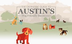 Austin Is The Rescue Pet Capital Of World We Don T Go Anywhere