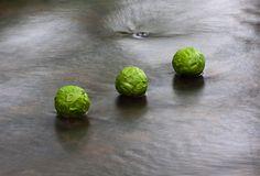 Hazel Spheres on Water - Richard Shilling