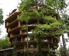 Chile (Huilo-Huilo) : Baobab Hotel & Spa