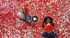 Video Sardegna - Sant'Efisio Cagliari