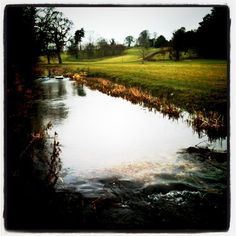 Grey but gorgeous day in the Cotswolds. Happy Monday. by Charlotte & Co., via Flickr