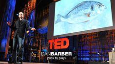 Collection of Ted Talks related to farming and food! Must watch!!!