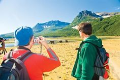 Grizzly bear viewing with mountains in the background