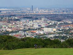Blick vom Lainzer Tiergarten über Wien