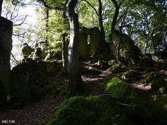 Gibt es ein fränkisches Stonehenge bei Stierberg?  Unter der Denkmal-Nummer D-4-6334-0074 ist ein Kultplatz der frühen Latènezeit beim Bayerischen Landesamt für Denkmalpflege gelistet. Der Platz ist ganz in der Nähe von Stierberg. An der höchsten Stelle ist ein Aussichtspunkt unterhalb davon findet man riesige Felsen die eine halbrunde Arena bilden. Auch wenn einige der Felsformationen eine kleine Ähnlichkeit zu Stonehenge erahnen lassen ist trotzdem alles natürlichen Ursprungs.