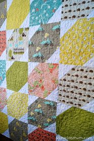 Baby Quilt; BlueBird Park Moda Fabric