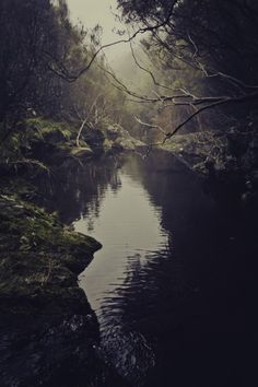Superb Nature - Lagoa do vento Dark White, Portugal, Dark Forest, Forest River, Adventure Is Out There, Natural World, Amazing Nature, The Great Outdoors, Mother Nature