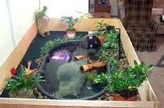 how to build an indoor pond. First, you have to prepare a container ...