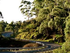 Scenic drives are everywhere when you visit the Daylesford area, in every direction you will find beautiful scenery and interesting towns to visit like Maldon, Castlemaine, Trentham, Creswick and Kyneton just to name a few.
