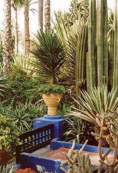 204 Best Jardin Majorelle Images Morocco Beautiful Places Color Blue