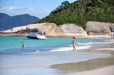 Santa Catarina, the Ibiza of Brazil. Voted by Forbes as best Holiday Destination! Look for yourself! >> Santa Catarina, Brazil --> http://santacatarinabrasil.com