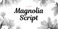 Magnolia Script Font · 1001 Fonts