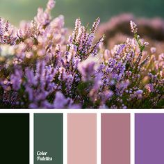 """dusty"" pink color, beige color, color of green leaves, color of greens, color palette for home, color selection for apartment, cream color, dark green color, light green color, lilac color, lilac shades, palette for repairs, pink color, purple color."