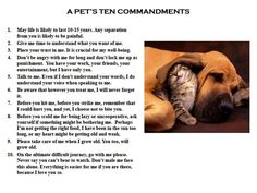 pets ten commandments -I miss you so much Sophie