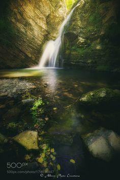 The Voice of Nature by NickAbbrey. @go4fotos