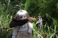 Azone doll: Koron little wolf at the park By Mes Crazy Experiences