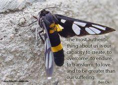 Overcome, transform and love!