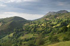 Collada de Arnicio, Piloña, Asturias