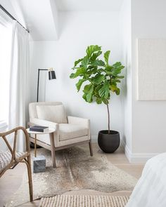 A fiddle leaf fig plant in a black pot is positioned in a corner beside an oatmeal linen bedroom chair lit by a black and gold floor lamp and placed on a tan and gold metallic cowhide rug beside a round two-toned accent table. Home Decor Bedroom, Living Room Decor, Linen Bedroom, Living Room Accent Chairs, White Bedroom Chair, 60s Bedroom, Master Bedroom, White Accent Chair, Master Suite