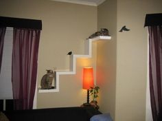 Beautiful home ideas for beloved cats, a funny playing place for pets in the house pet-ideas