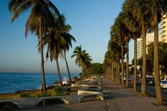 Picture titled Malecon from our Santo Domingo, Dominican Republic photo gallery. Check out this and 19 other pictures of Santo Domingo. Beautiful Islands, Beautiful Beaches, Beautiful Gardens, Puerto Rico, Travel Around The World, Around The Worlds, Voyager Loin, Hotels, Beaches In The World