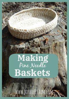 making pine needle baskets~JoybileeFarm