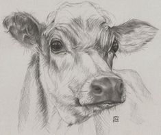 Quick drawing of a cow, donated to a charity to raise funds to feed farm animals affected by flooding. farm animals Drawing The Human Figure - Tips For Beginners Pencil Sketches Of Animals, Art Drawings Sketches, Hipster Drawings, We Draw Animals, Farm Animals, Drawing Animals, Realistic Animal Drawings, Wild Animals, Cow Drawing
