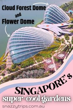 The Enchanting Cloud Forest Dome And Flower Dome In Singapore 7