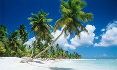 Isla Saona ist eine etwa 110 km2 große Insel im Osten der Dominikanischen Republik. Die gesamte Insel gilt als Nationalpark und steht unter Naturschutz. Tropische Palmenwälder, Sandstrände und eine hohe Population an seltenen Vögeln gehören zu den Dingen, die Touristen auf der Insel erwarten.