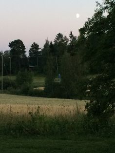 Kesäyö - Summer night