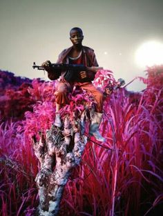 The Enclave. Richard Mosse