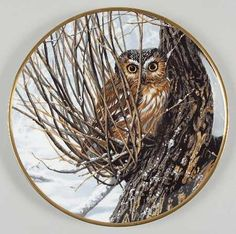 Hamilton CollectionNoble Owls of America: Hiding Place - Made by Spode - Artist: John Seerey-Lester