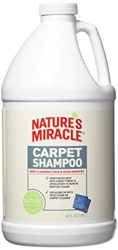 Nature S Miracle Deep Cleaning Pet Stain And Odor Carpet Shampoo 64oz 1 2 Gallon Carpet Shampoo Carpet Cleaning Solution Pet Stains