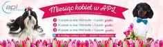 Miesiąc kobiet w APL Health & Happiness. Specjalna promocja na dzień kobiet. Zakupić można od 1 marca do 31 marca na http://apl-zoo.eu