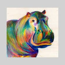 the 58 best colourful animal art images on pinterest colorful