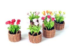 Miniature Polymer Clay Flowers Spring Blooming Tulip 6 Baskets from 39.0 USD now only 19.95 USD. $19.95, via Etsy.