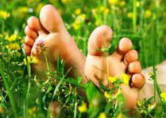Domácí léčba plísně - Domácnost - MojeDílo.cz Kraut, Health, Plants, Fitness, Style, Diet, Swag, Health Care, Plant