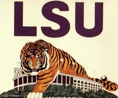 Lsu Tigers Pictures and Images Louisiana Homes, Louisiana State University, Louisiana Swamp, Louisiana Art, Lsu Tigers Football, Tiger Stadium, Tiger Pictures, Dachshund Puppies, Death Valley