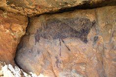Un cérvol a una de les pintures rupestres de Capçanes