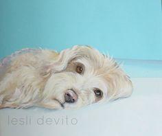 12 besten Barney Bilder auf Pinterest   Hund katze, Haustiere und Holz